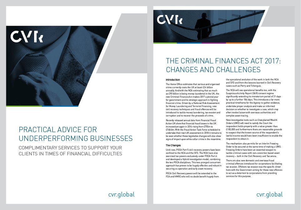 CVR Global Brochure Design